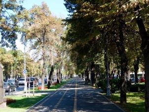 Primavera neighborhood